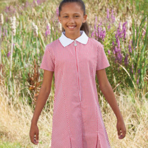 Gingham Summer Dress