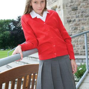 Smart Pleated Skirt