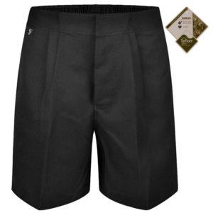 Boys Pleated School Shorts