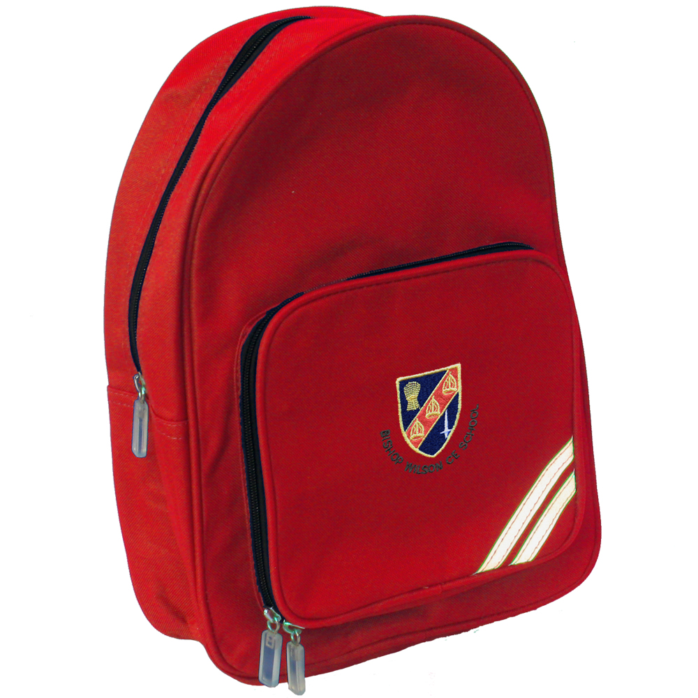 Backpack Style School Bag