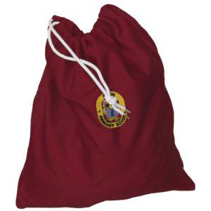 PE/ Pump Bag