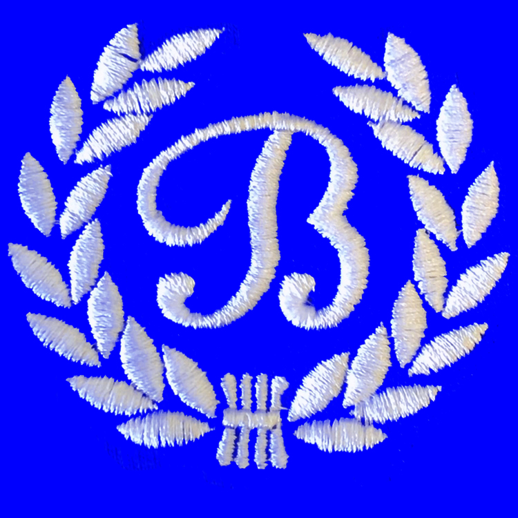 Berkeley Academy logo